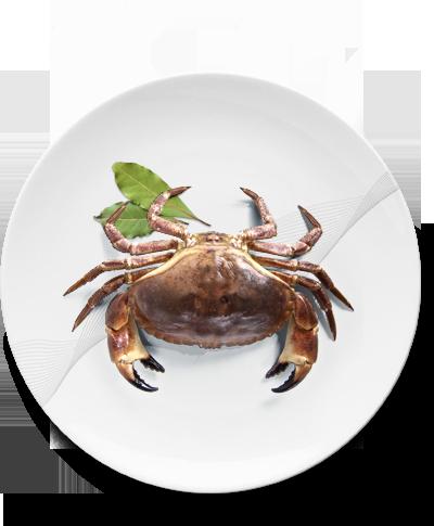 plat-crabe